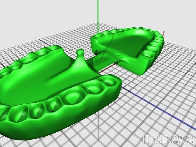 牙齿和牙龈 3D模型  图1