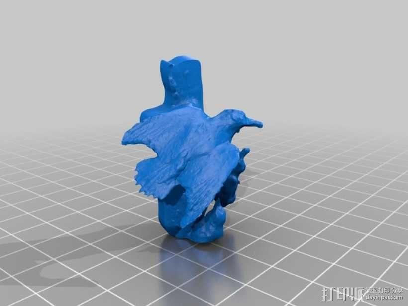 啄木鸟 3D模型  图2