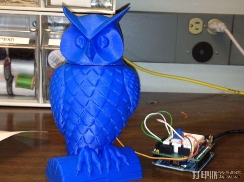 猫头鹰  3D模型  图4