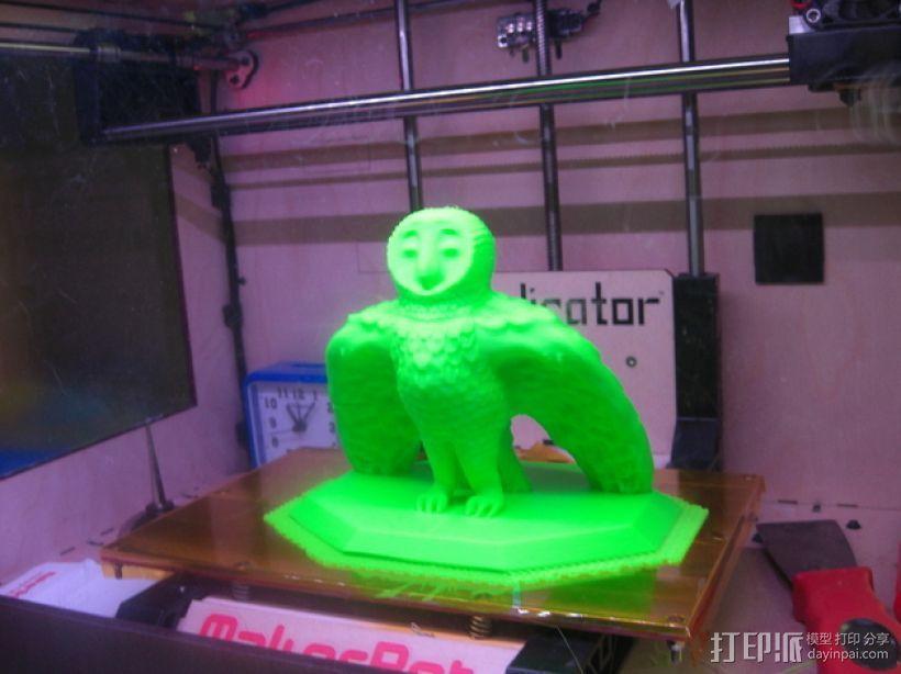 仓鸮 谷仓猫头鹰 3D模型  图1