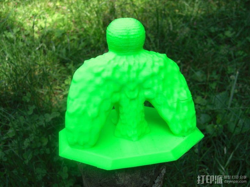 仓鸮 谷仓猫头鹰 3D模型  图3