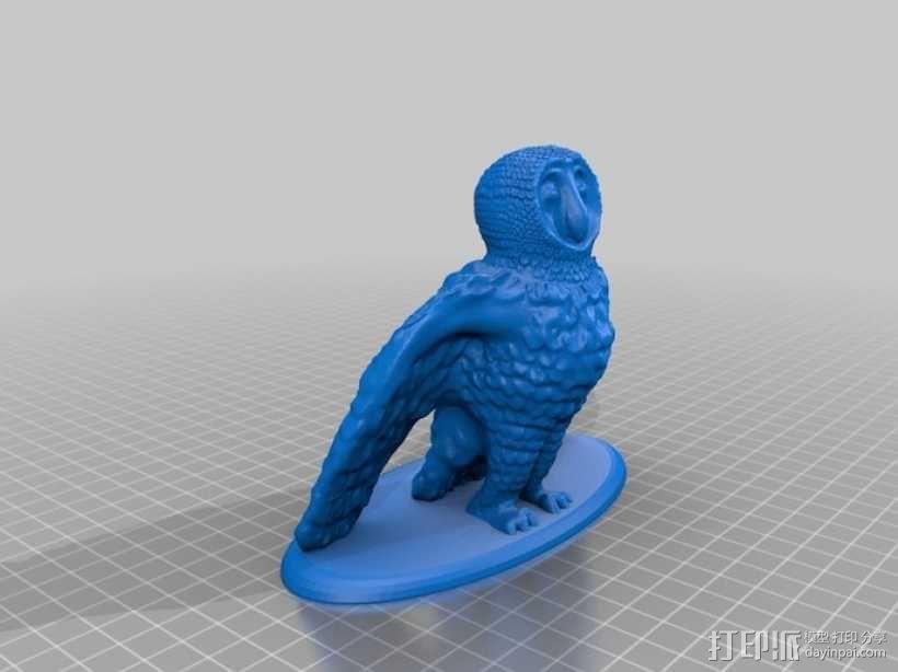 仓鸮 谷仓猫头鹰 3D模型  图6