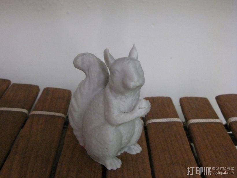 松鼠 3D模型  图1
