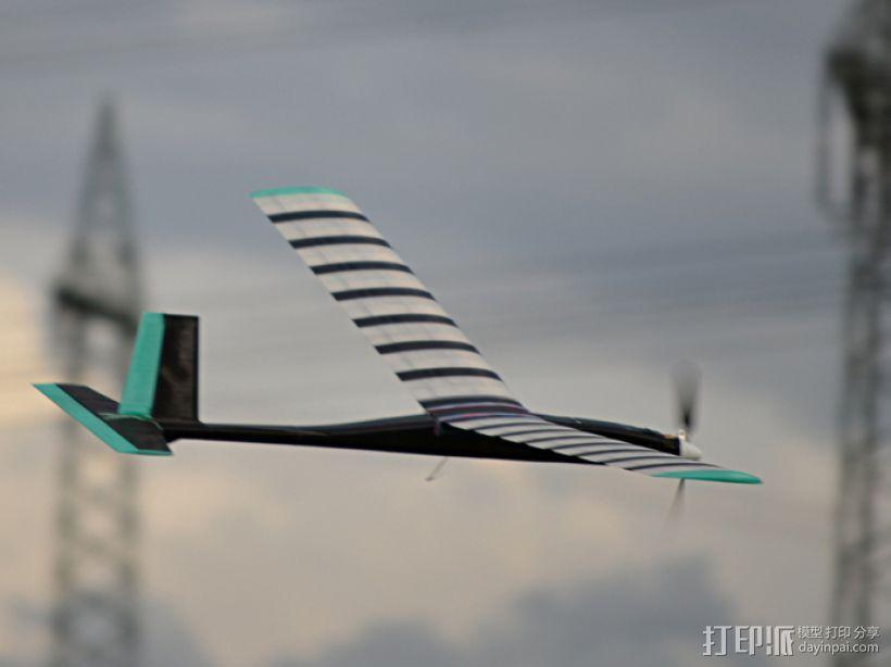 FDM 3D打印的滑翔机 3D模型  图3