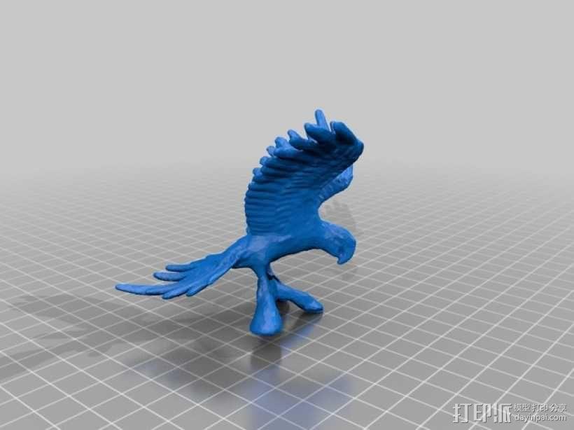彩雀 3D模型  图3