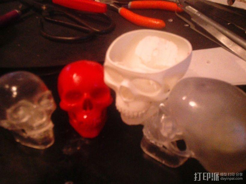 骷髅头 3D模型  图3