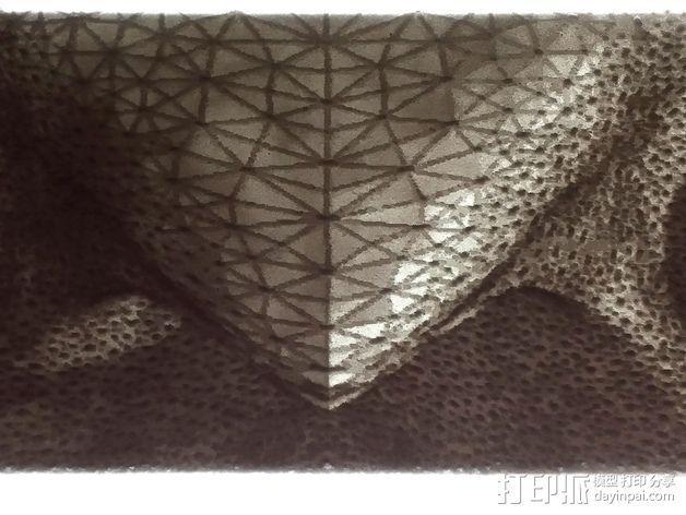 光刻 猫头鹰 3D模型  图11