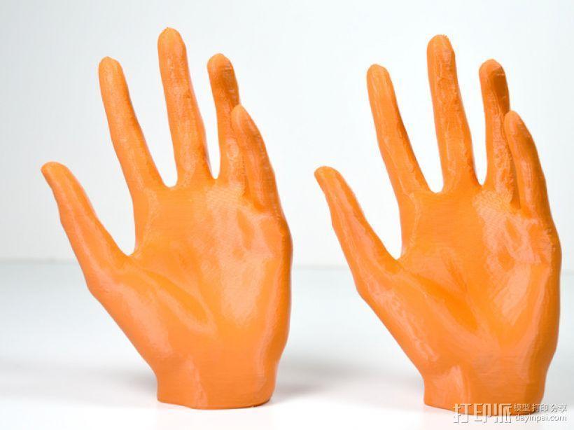 低面数 手模型 3D模型  图4