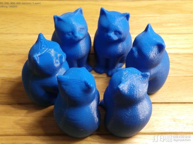 小猫 层厚填充测试 3D模型  图1