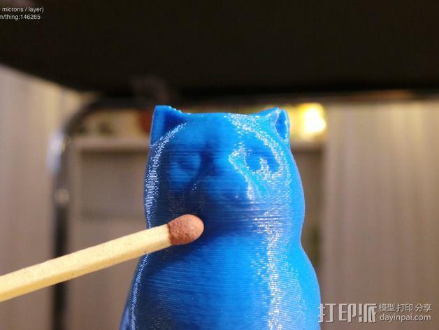 小猫 层厚填充测试 3D模型  图8