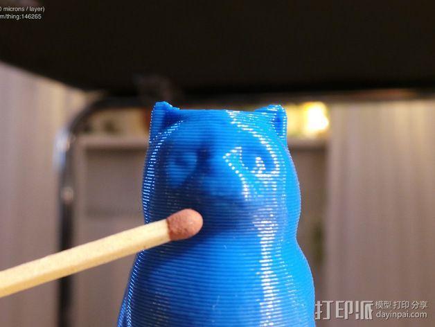 小猫 层厚填充测试 3D模型  图6