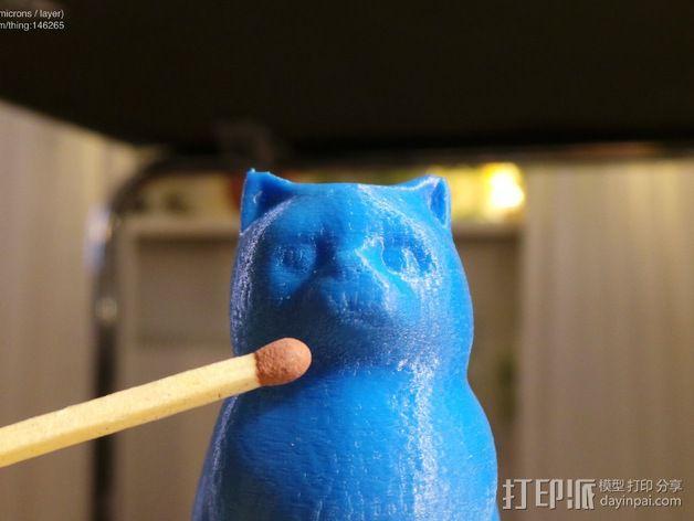 小猫 层厚填充测试 3D模型  图9