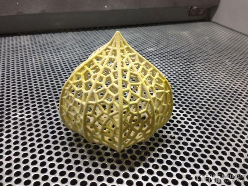 灯笼草  灯罩 3D模型  图1
