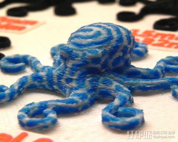 章鱼 打印测试 3D模型  图17