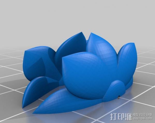 永不凋谢的花  3D模型  图1