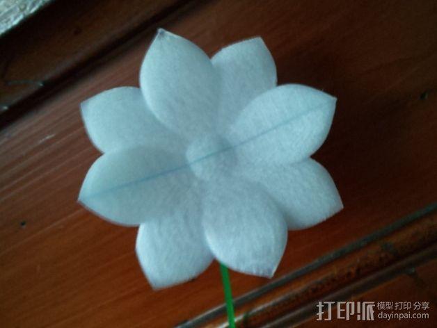 永不凋谢的花  3D模型  图2