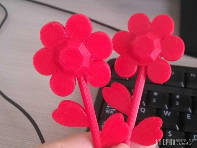 漂亮的两朵花 3D模型  图1
