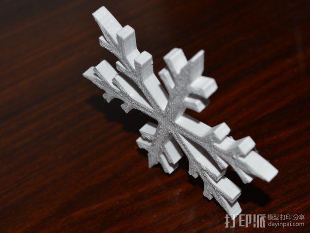 雪花 3D模型  图3