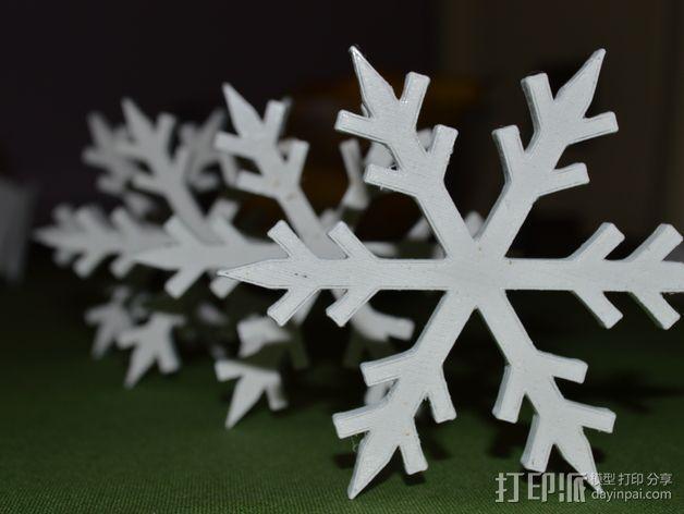 雪花 3D模型  图4