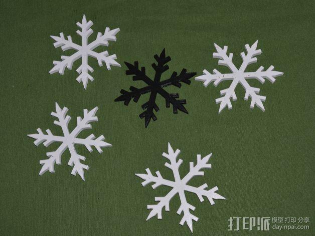 雪花 3D模型  图6