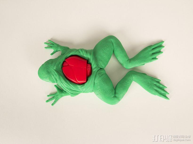 解剖的青蛙 3D模型  图1