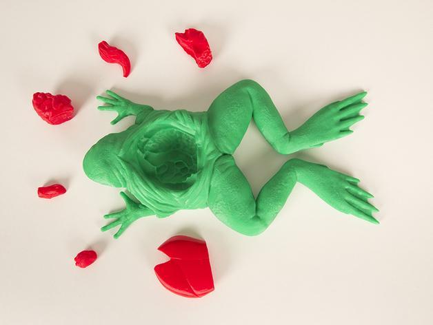 解剖的青蛙 3D模型  图2