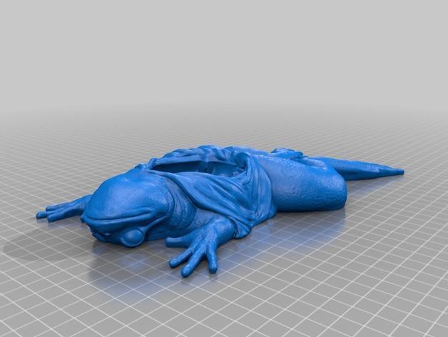 解剖的青蛙 3D模型  图3