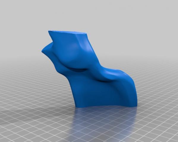 巴哈马锤头鲨头骨 3D模型  图14