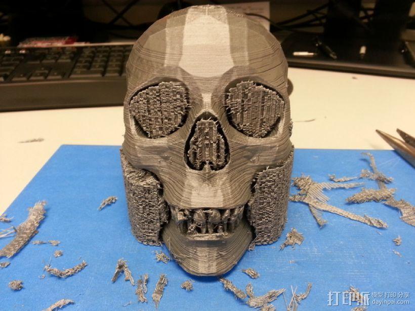 人头骨 3D模型  图4
