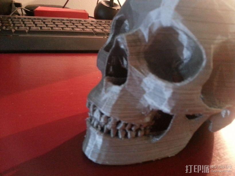 人头骨 3D模型  图2