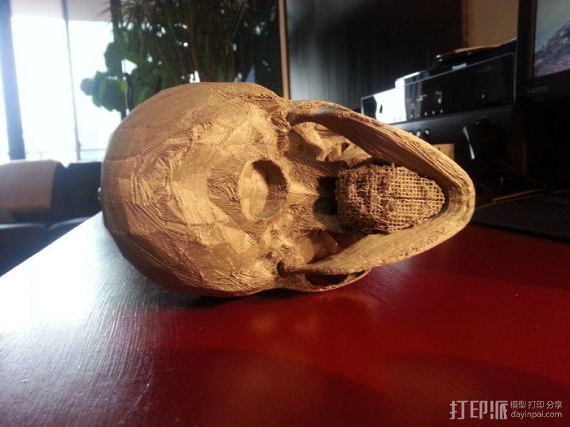 人头骨 3D模型  图7