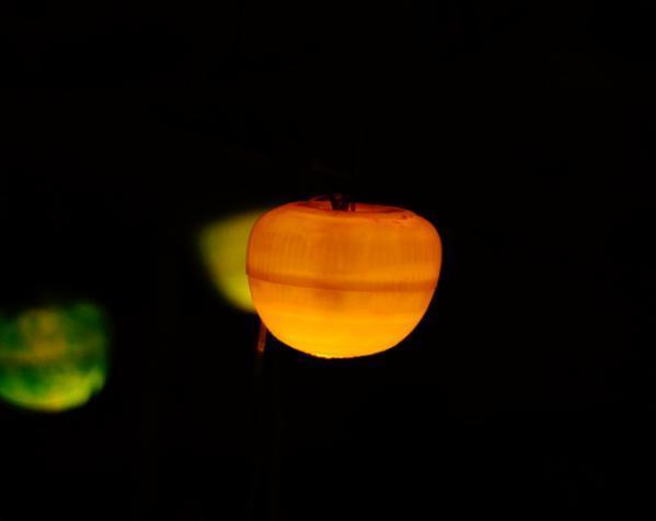 太阳能苹果形灯具模型 3D模型  图3