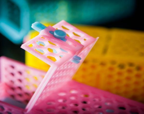 迷你捕鼠器模型 3D模型  图8