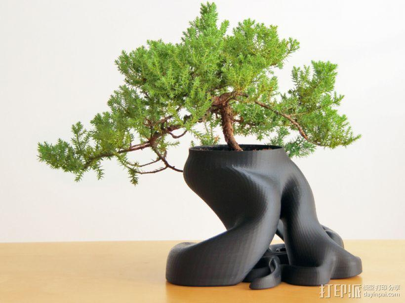 美观实用花盆模型 3D模型  图1