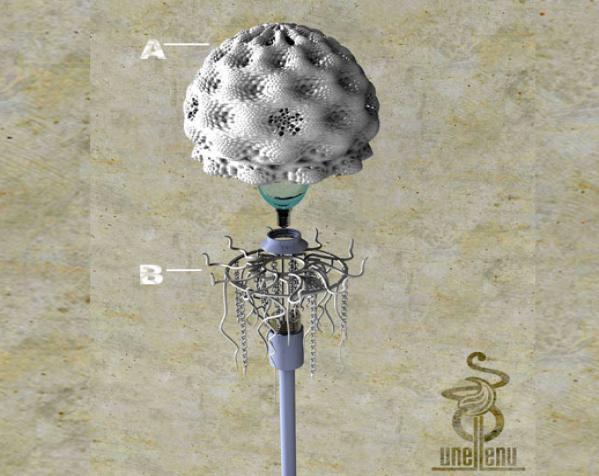 迷你水母灯罩模型 3D模型  图2