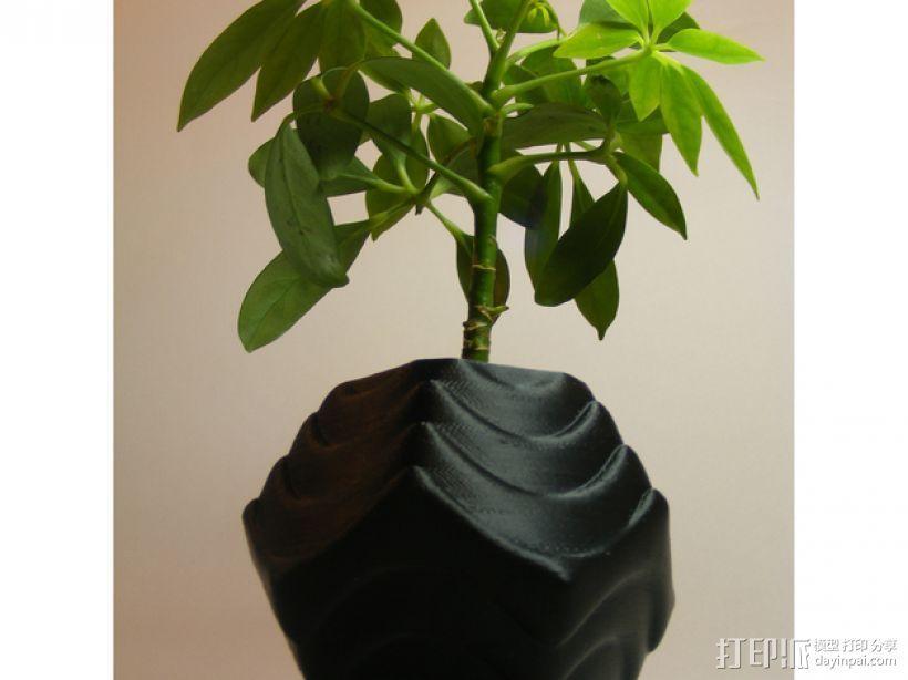 Plantekka花盆 3D模型  图2