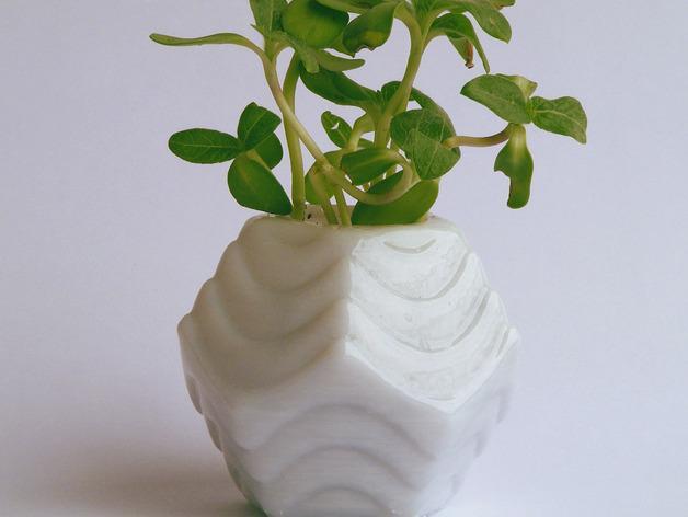 Plantekka十二面体花盆 3D模型  图2