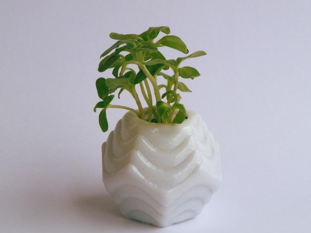 Plantekka十二面体花盆 3D模型  图4