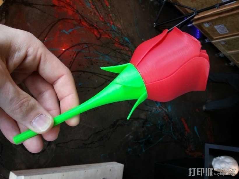 迷你玫瑰模型 3D模型  图4