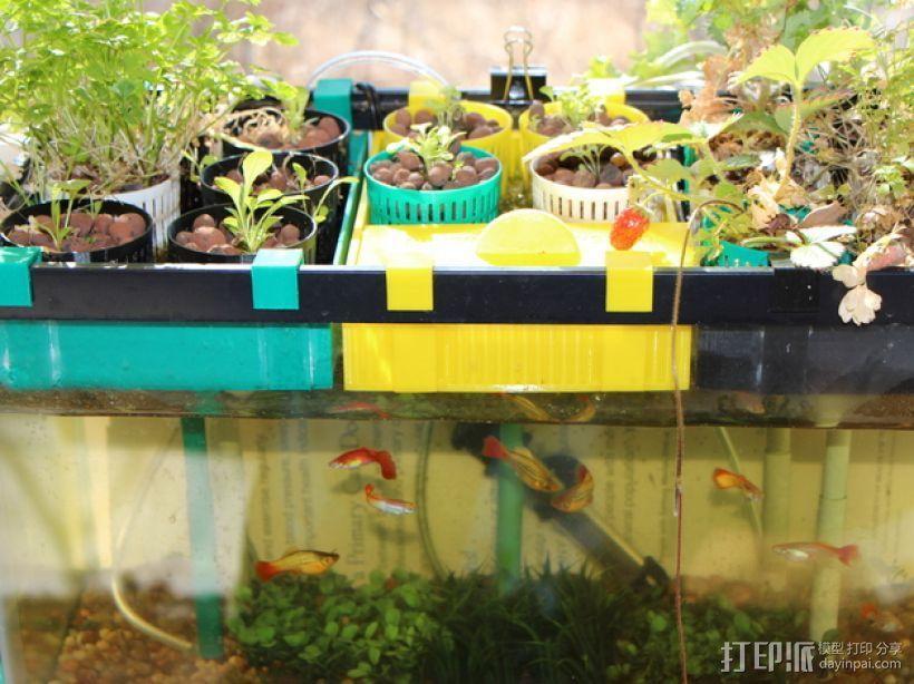 鱼菜共生系统 3D模型  图1