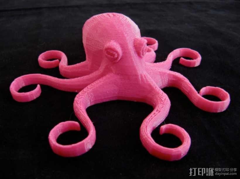 章鱼磁铁 3D模型  图1