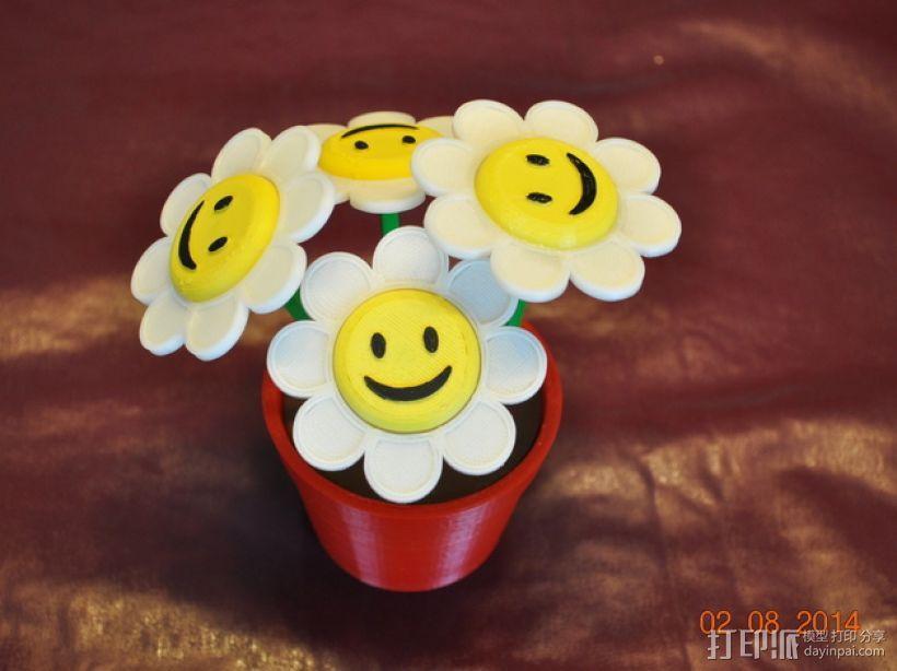 笑颜花和花盆 3D模型  图1