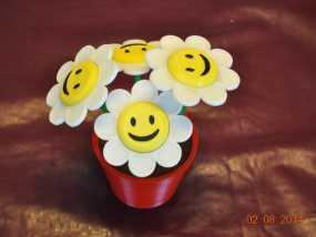 笑颜花和花盆 3D模型