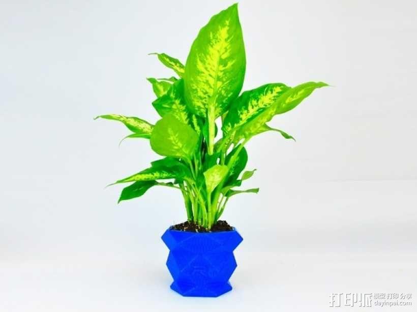 多边形花盆 3D模型  图4