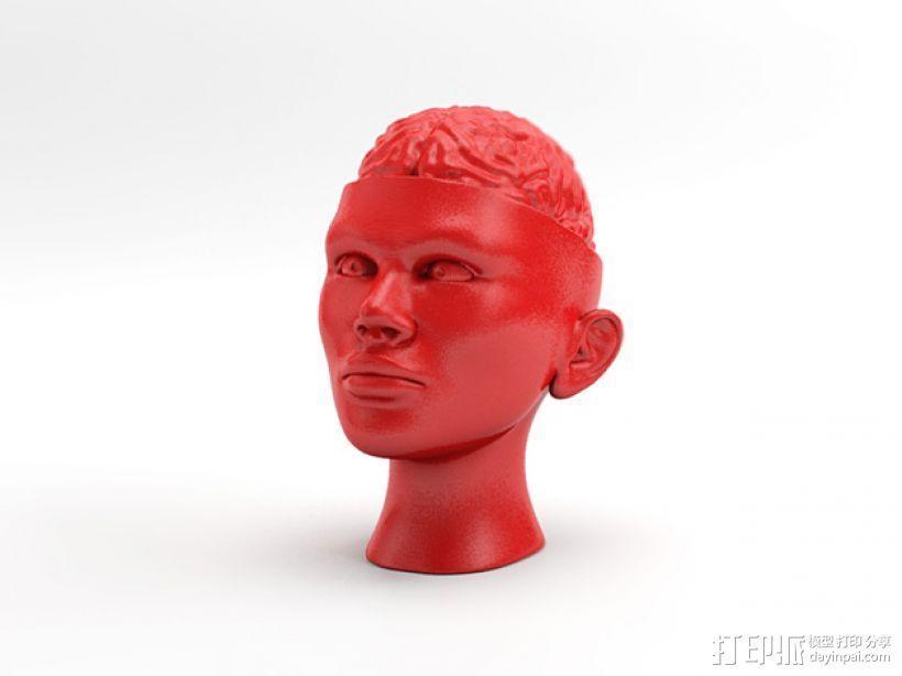 人脑形纸镇/压纸器 3D模型  图1