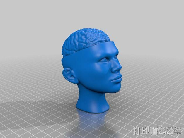 人脑形纸镇/压纸器 3D模型  图2