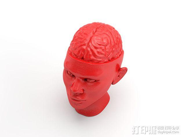 人脑形纸镇/压纸器 3D模型  图3