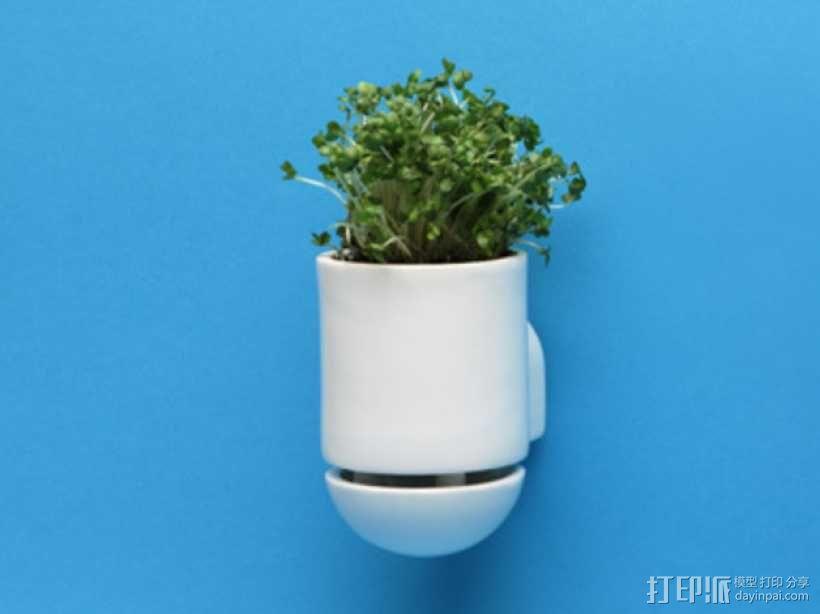 壁挂式盆栽/搁板把手 3D模型  图1