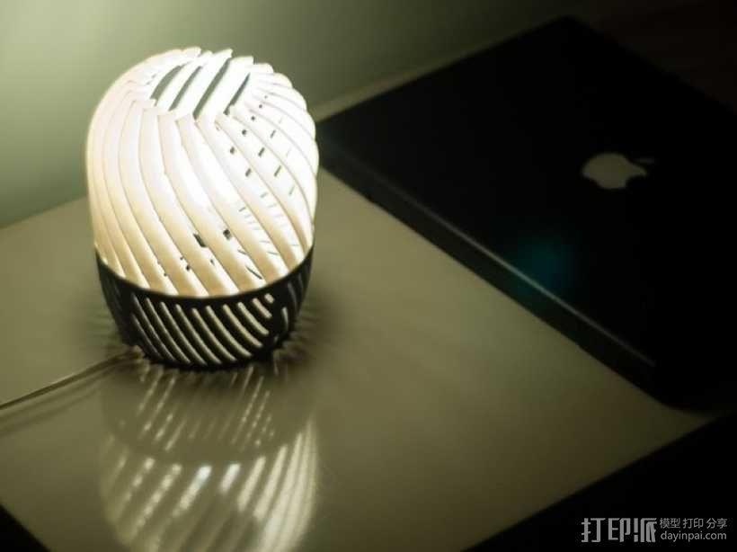 螺旋形灯罩 3D模型  图2