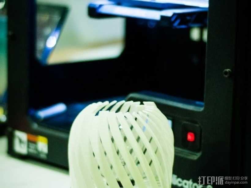 螺旋形灯罩 3D模型  图5